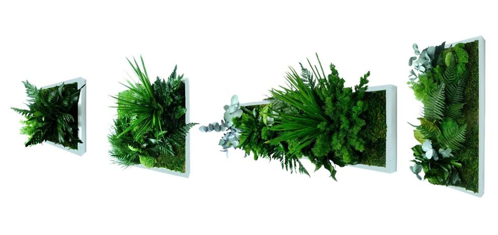 tableau végétal design prix usine