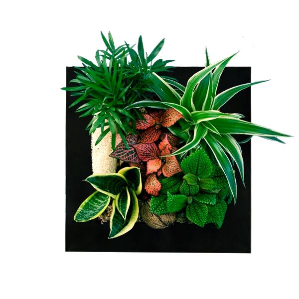 Tableau végétal rendezvousdeco