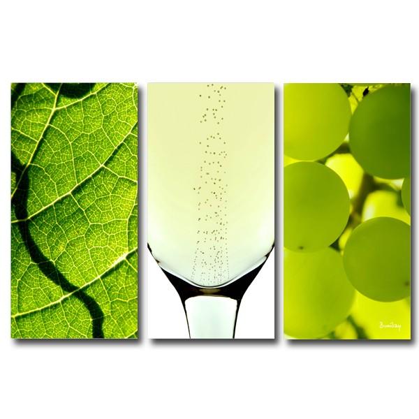 triptyque vin blanc